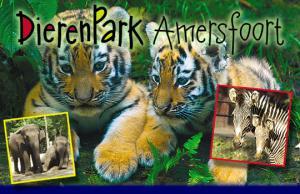 dierenpark-amersfoort